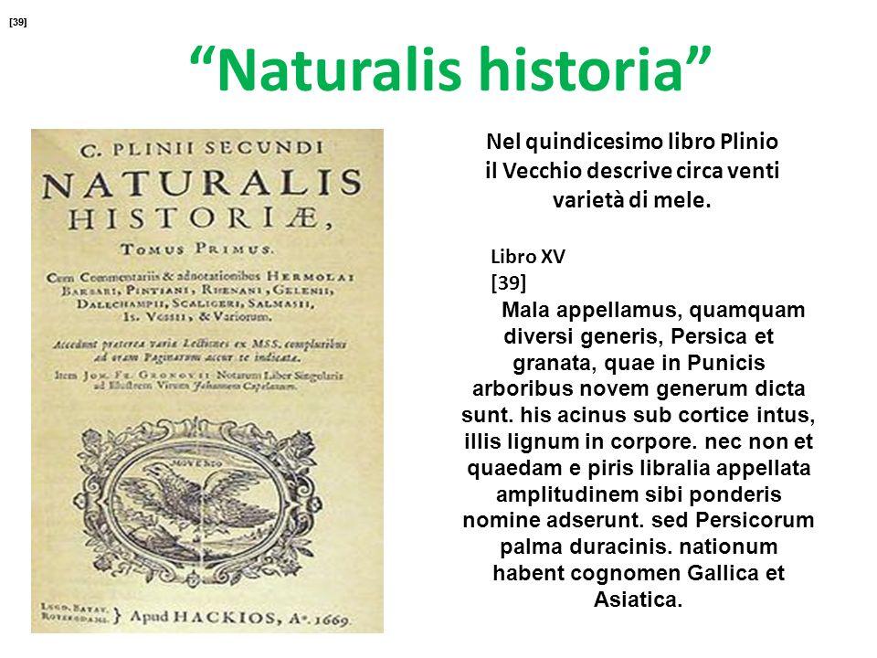 [39][39] Naturalis historia Nel quindicesimo libro Plinio il Vecchio descrive circa venti varietà di mele.